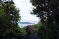 On the Queen Charlotte Track