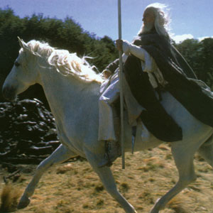 Gandalf and Shadowfax