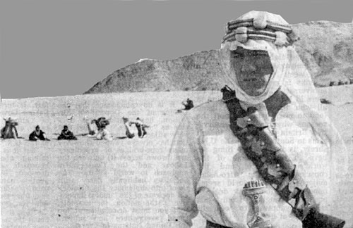 Ian McKellen as T. E. Lawrence (of Arabia)